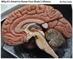 Brain history title image