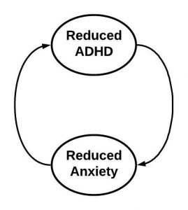 A feedback loop showing that reduced ADHD leads to reduced anxiety, which leads to reduced ADHD
